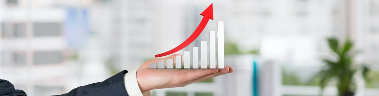 Accounting Outsourcing Services – An inexpensive way to grow!